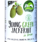 423879-Natures-Charm-Young-Green-Jackfruit-in-Water-565g